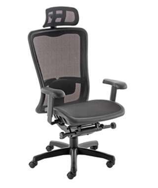 Gamma Mesh Task Chair