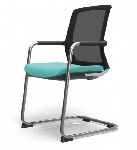 TR250 Meeting Chair