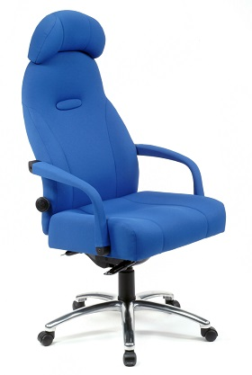 Grande Back Care Chair