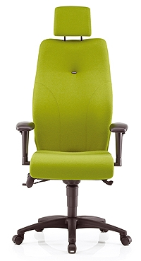 Ethos Back Care Chair