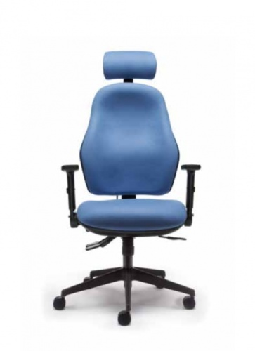 Orthopaedica Back Care Chair 100