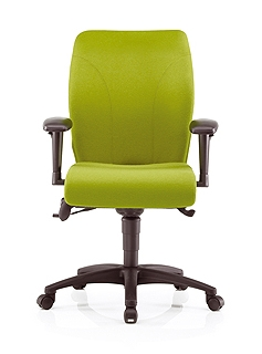 Ethos Back Care Chair | Ethos Posture Chair
