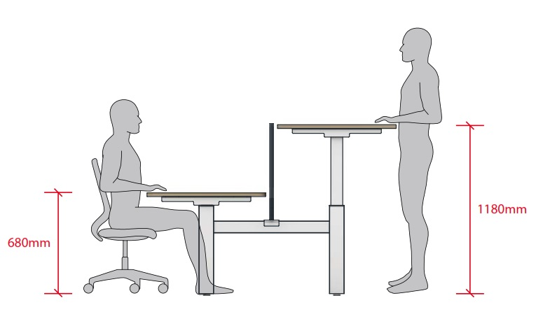 Move Height Adjule Desks