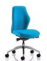 Flexion Task Chair Models