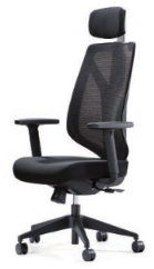 Mentor Mesh Task Chair Image