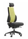 Apex Posture Back Care Chair Models