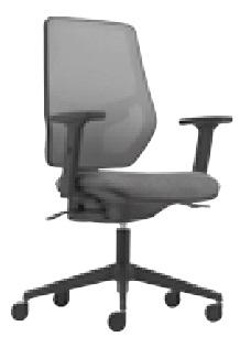 Meteor Mesh Task Chair