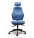 Orthopaedica Back Care Chair Model